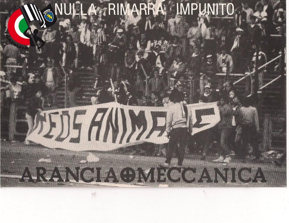 Arancia Meccanica- Reds Animals